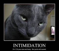 intimidation的图片释义。 如果您认为该图片不合适,可以上传新图片来帮助我们改进