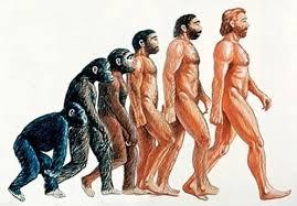 anthropology的图片释义。 如果您认为该图片不合适,可以上传新图片来帮助我们改进