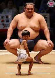 sumo的图片释义。 如果您认为该图片不合适,可以上传新图片来帮助我们改进
