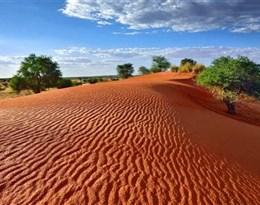 Kalahari的图片释义。 如果您认为该图片不合适,可以上传新图片来帮助我们改进
