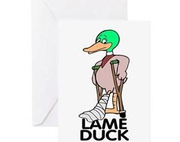 lame duck的图片释义。 如果您认为该图片不合适,可以上传新图片来帮助我们改进