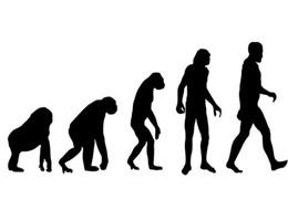 évolution的图片释义。 如果您认为该图片不合适,可以上传新图片来帮助我们改进