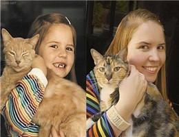 ressemblance的图片释义。 如果您认为该图片不合适,可以上传新图片来帮助我们改进