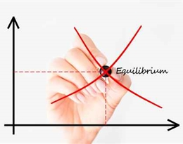 equilibrium的图片释义。 如果您认为该图片不合适,可以上传新图片来帮助我们改进