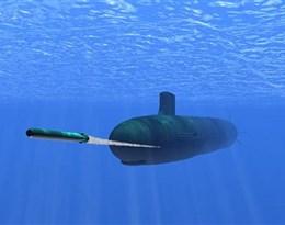 homing torpedo的图片释义。 如果您认为该图片不合适,可以上传新图片来帮助我们改进