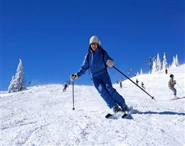 ski的图片释义。 如果您认为该图片不合适,可以上传新图片来帮助我们改进