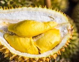 durian的图片释义。 如果您认为该图片不合适,可以上传新图片来帮助我们改进
