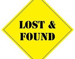 lost and found的图片释义。 如果您认为该图片不合适,可以上传新图片来帮助我们改进